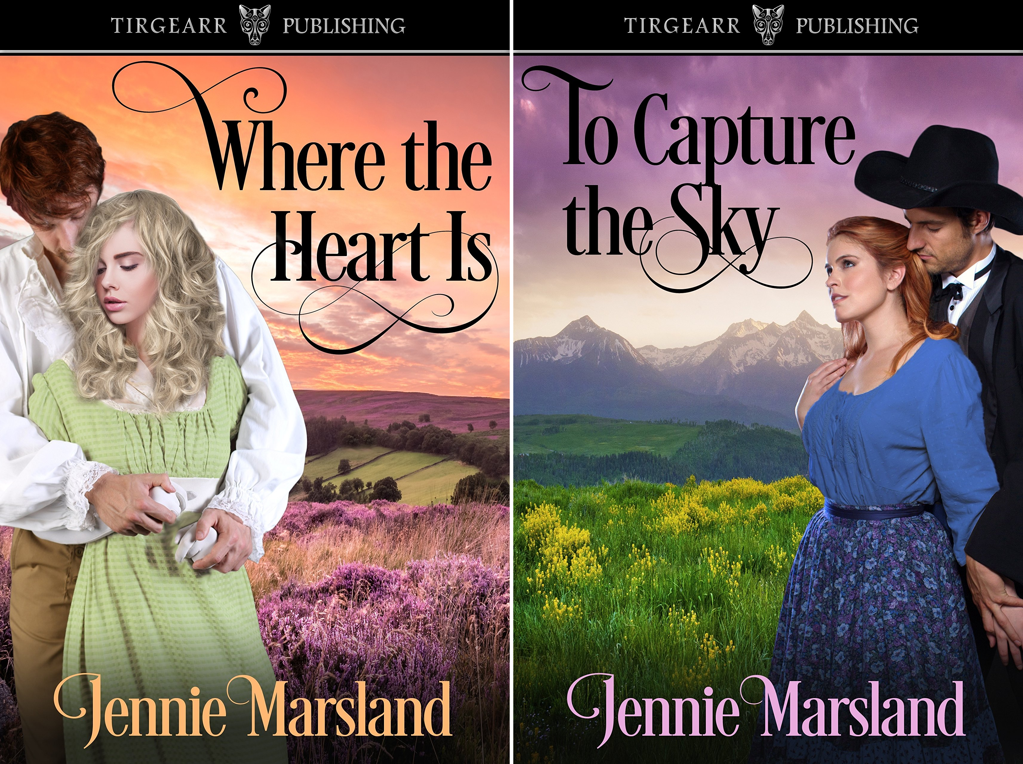 Choices of the Heart (2 Book Series)