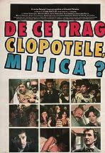 De ce trag clopotele, Mitica?
