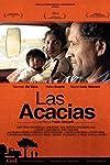 Venice: Film Factory Acquires Pablo Giorgelli's 'Las Acacias' Follow-Up 'Invisible' (Exclusive)