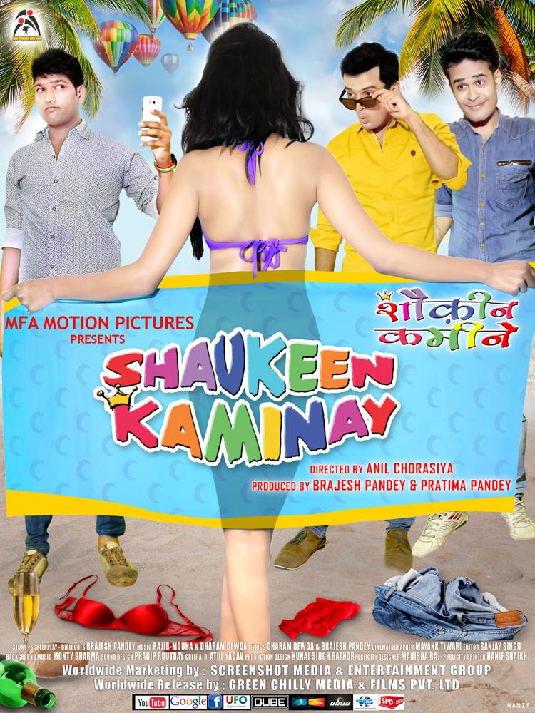 Shaukeen Kaminay 2016 720p HEVC WEB-DL x265 500MB