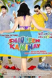Shaukeen Kaminay Poster