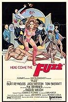 Image of Fuzz
