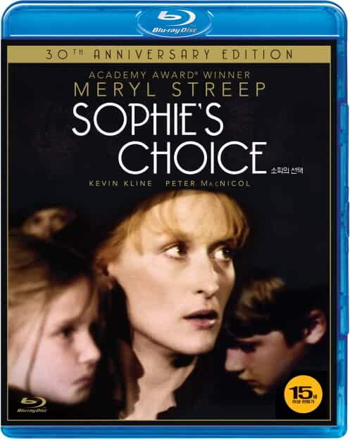 Sophie's Choice 1982 Hindi Dual Audio 480p BluRay 300MB