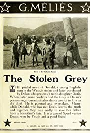 The Stolen Grey Poster