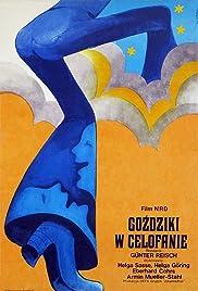 Nelken in Aspik Poster