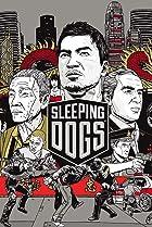 Image of Sleeping Dogs