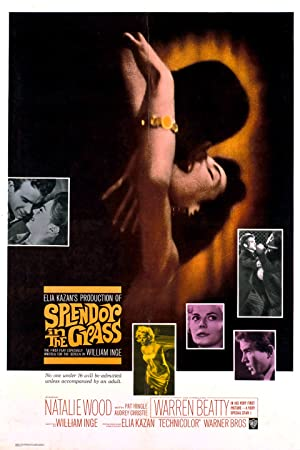 Splendor in the Grass (1961)