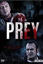 Image of Prey