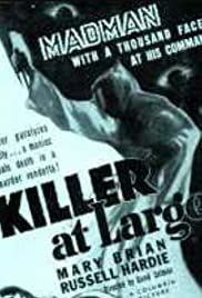 Killer at Large Poster