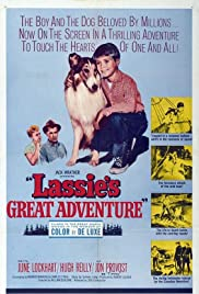 Lassie's Great Adventure (1963) Poster - Movie Forum, Cast, Reviews