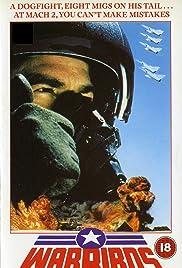 Warbirds Poster