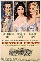 Image of Raintree County