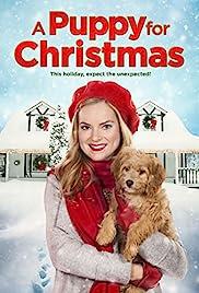 A Puppy for Christmas(2016) Poster - Movie Forum, Cast, Reviews