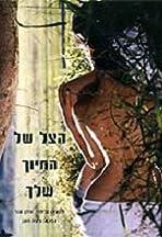 Ha-Tzel, Shel Hachiuch Shelchah