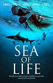 Sea Of Life (2016) poster