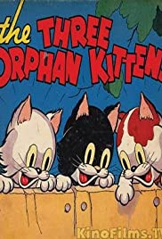 Three Orphan Kittens Poster