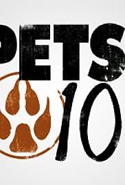 Little Pets Poster