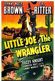 Little Joe, the Wrangler Poster