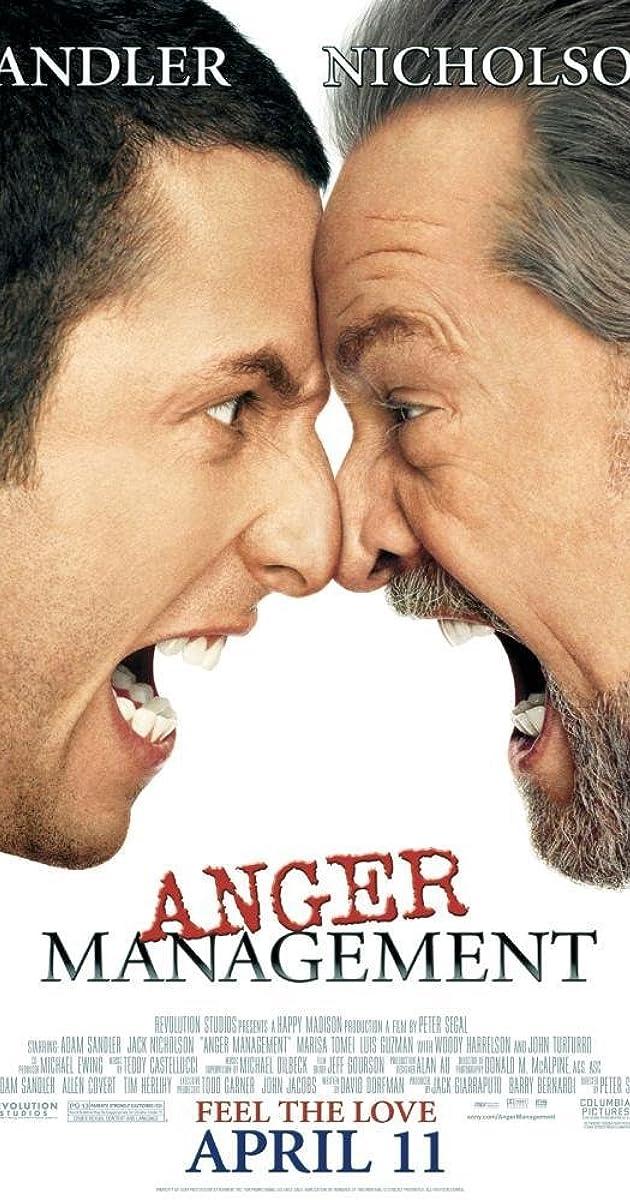 anger management plot summary imdb
