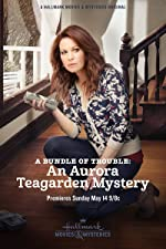 A Bundle of Trouble An Aurora Teagarden Mystery(2017)