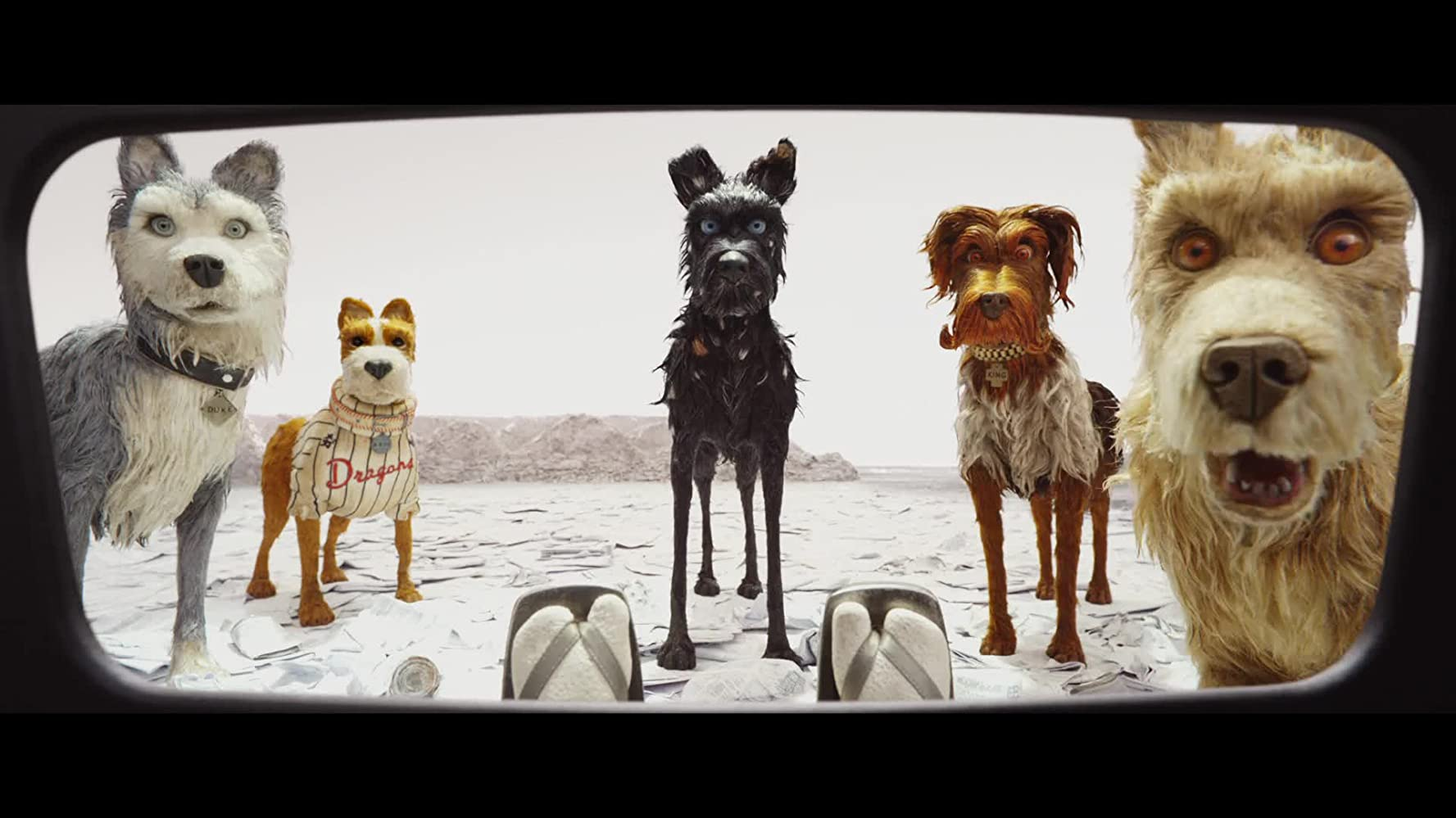 Jeff Goldblum, Bill Murray, Bob Balaban, Edward Norton, and Bryan Cranston in Isle of Dogs (2018)