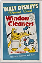 Image of Window Cleaners