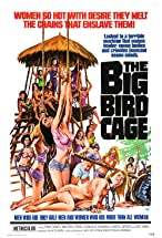Primary image for The Big Bird Cage