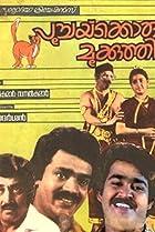 Image of Poochakkoru Mookkuthi