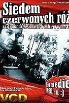 Image of Siedem czerwonych roz czyli Benek Kwiaciarz o sobie i o innych