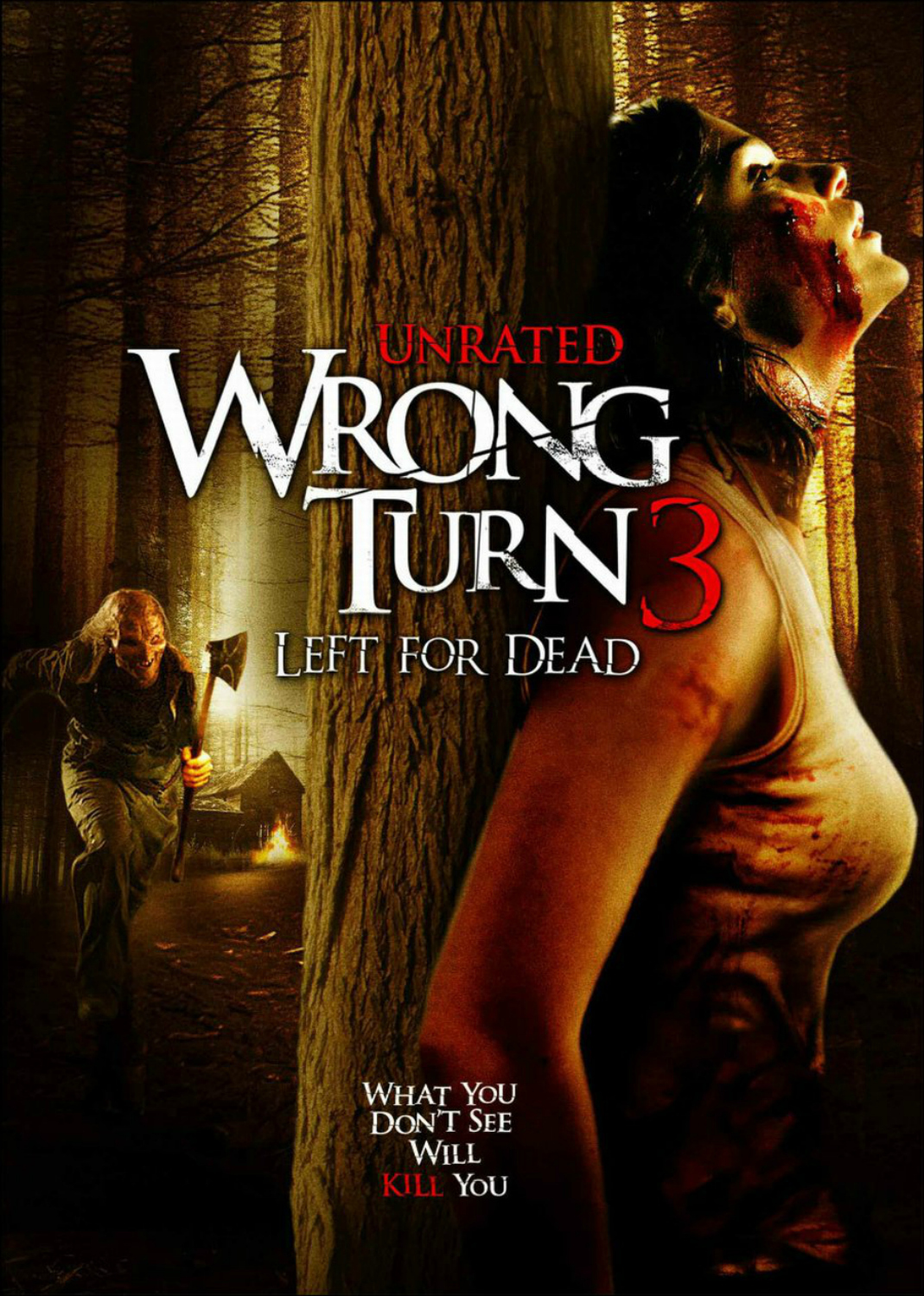 image Wrong Turn 3: Left for Dead (2009) (V) Watch Full Movie Free Online