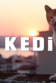 Kedi (2016) putlocker9