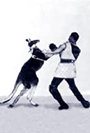 Das boxende Känguruh(1895) Poster - Movie Forum, Cast, Reviews
