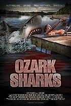 Image of Ozark Sharks