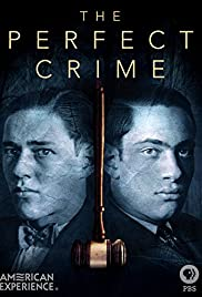 The Perfect Crime Poster