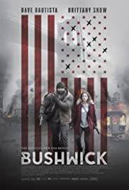 Bushwick 2017