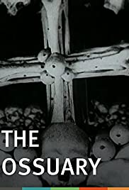 Kostnice Poster