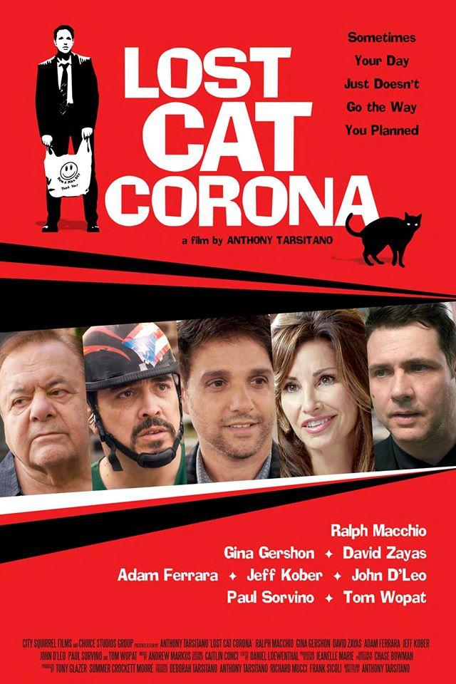 В Короне пропал кот (2017)