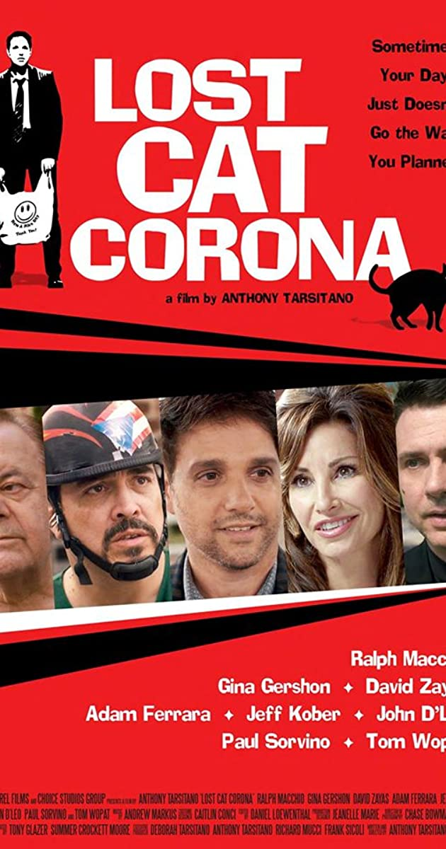 Lost Cat Corona (2017) web dl