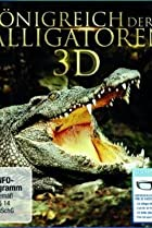 Image of Alligator Kingdom 3D