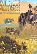 Wild Dog Wilderness