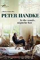 Image of Peter Handke: Bin im Wald. Kann sein, dass ich mich verspäte...