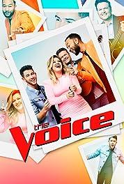 The Voice - Season 17 poster
