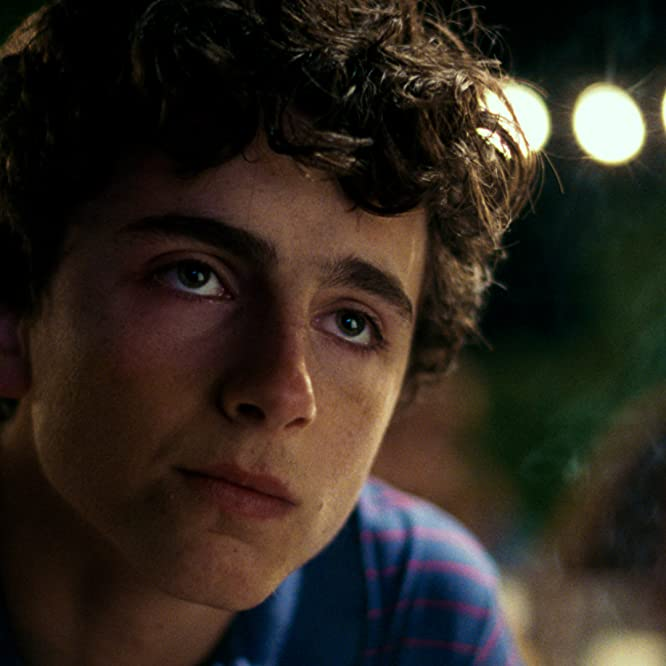 Timothée Chalamet in Call Me by Your Name (2017)