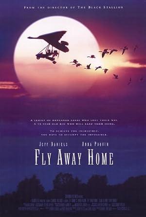 Volando a Casa -