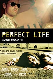 Perfect Life (2010) Poster - Movie Forum, Cast, Reviews