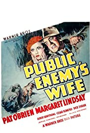 Public Enemy's Wife Poster