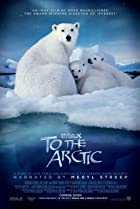 To the Arctic 3D (2012) Poster