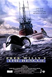 Free Willy 3: The Rescue poster