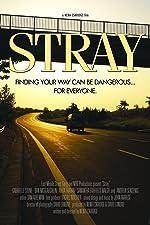 Stray(2016)