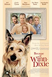Because of Winn-Dixie (2005) Poster - Movie Forum, Cast, Reviews